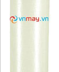 Cột lọc nước khử phèn sắt mangan Watts van Fleck 3900-0
